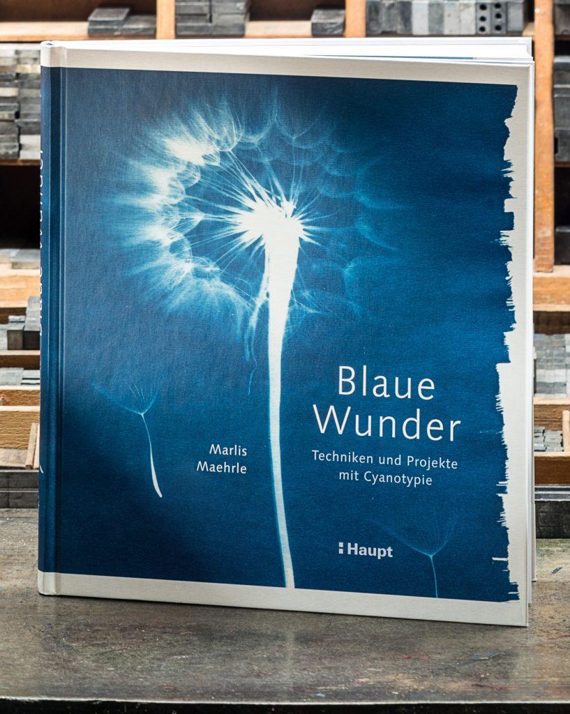 """Das Buch """"Blaue Wunder"""" auf meinem Setztisch"""